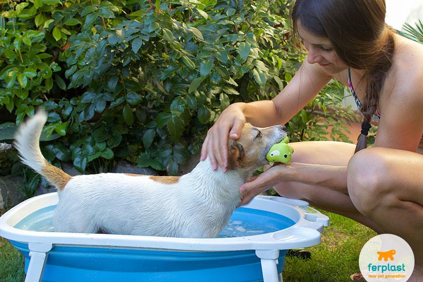 Fare il bagnetto al cane come lavare il cane a casa love ferplast - Bagno cane dopo antipulci ...