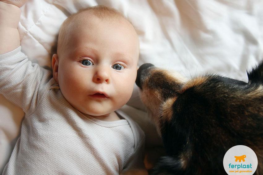 convivenza neonati e bambini