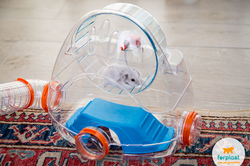gym exercise habitat for hamsters by ferplast