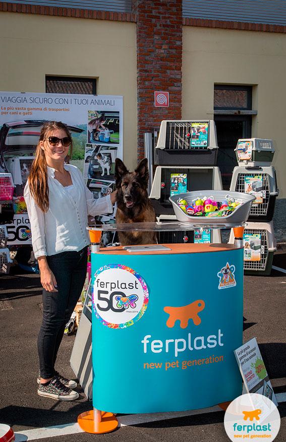 ferplast prodotti per cani per auto