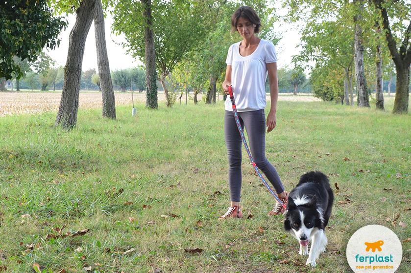 portare_cane_a_passeggiare_in_citta