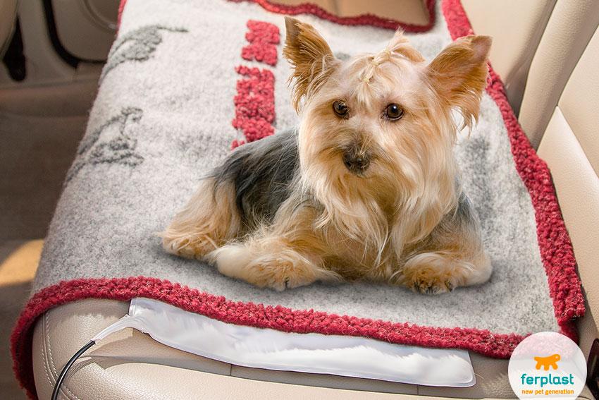 tappetino riscaldante per cani per auto