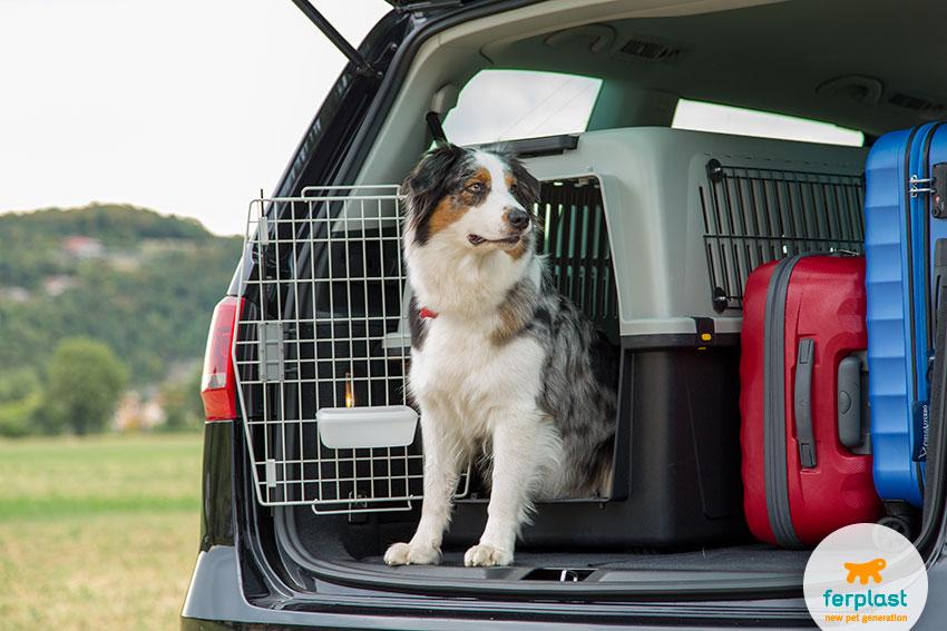 trasportino per cani per auto ferplast