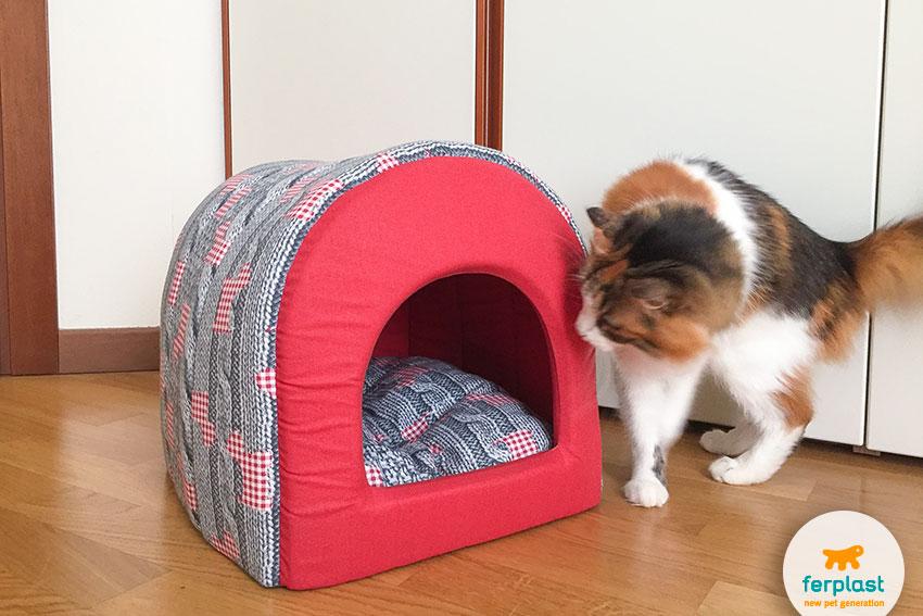 cuccia chiusa per gatti