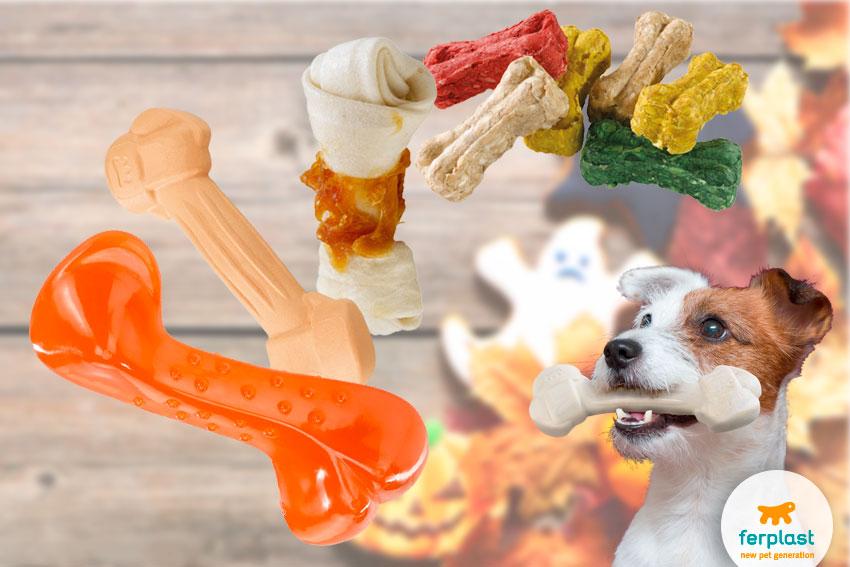 giochi per cani a forma di osso e bocconcini premio