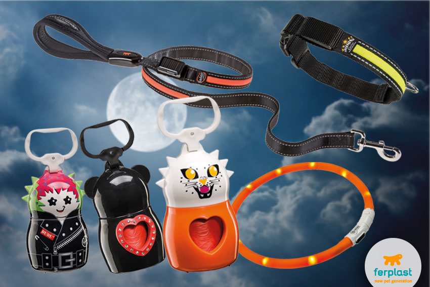 reflecting night leash and collar for dogs