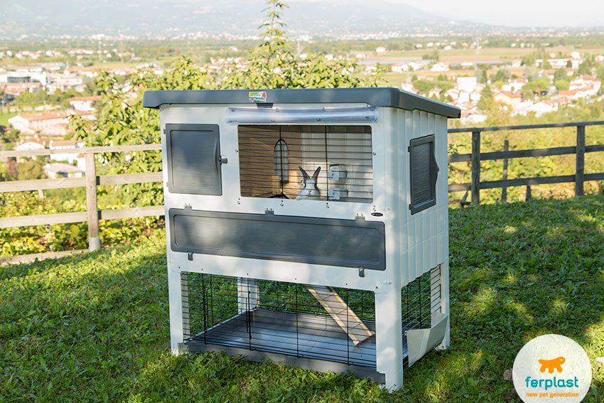spacious outdoor rabbit hutch