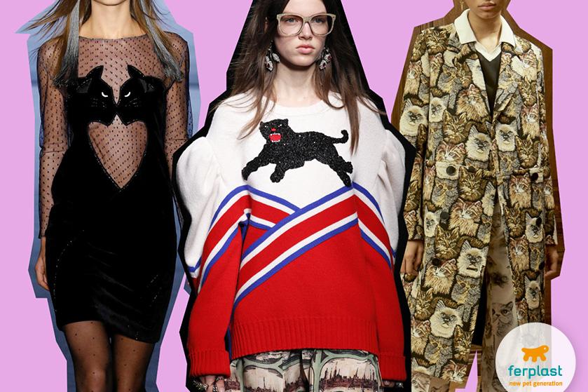 trend_stampa_gatti_moda