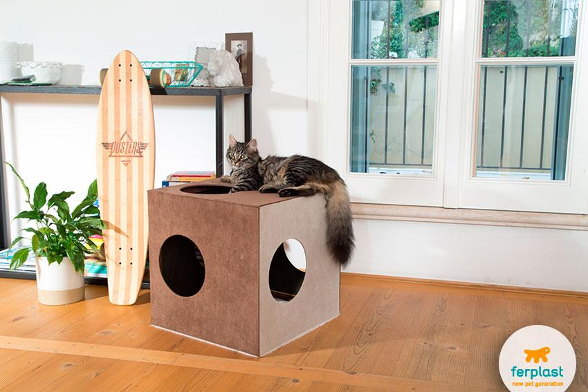 cuccia per gatti di design a forma di cubo