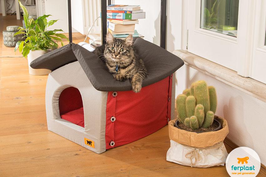 cuccia per gatti chiusa a forma di casetta