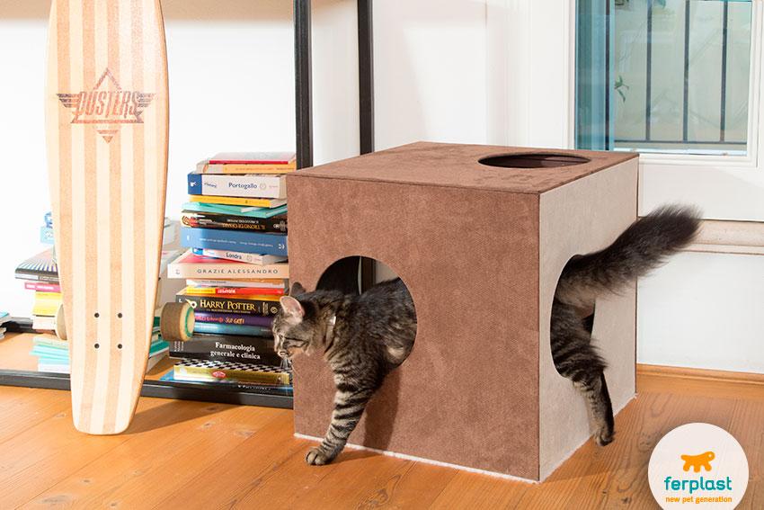 cuccia per gatti dal design originale a forma di cubo