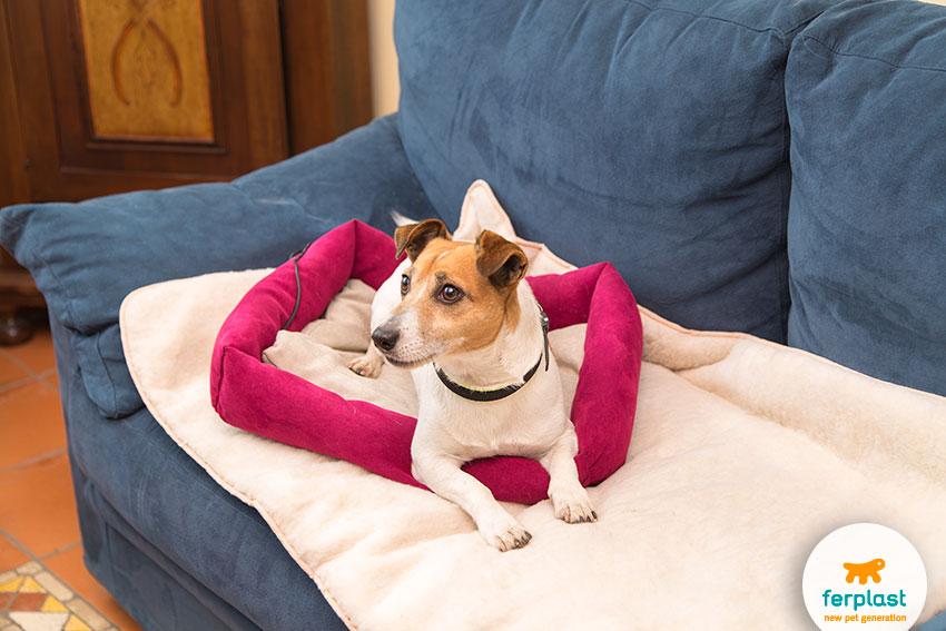cuscino riscaldante per gatti e cani