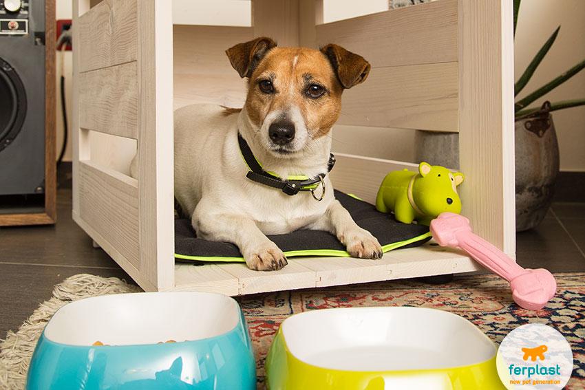 ferplast's dog toys