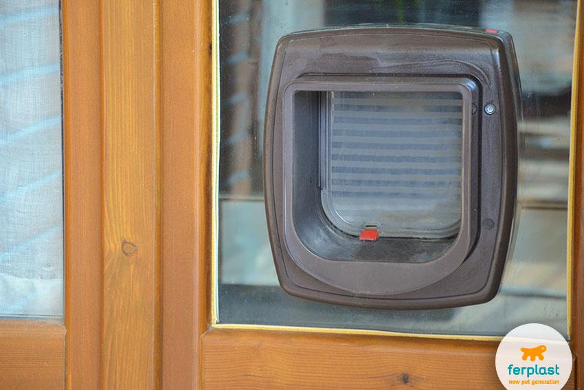 microchip-activated cat doors