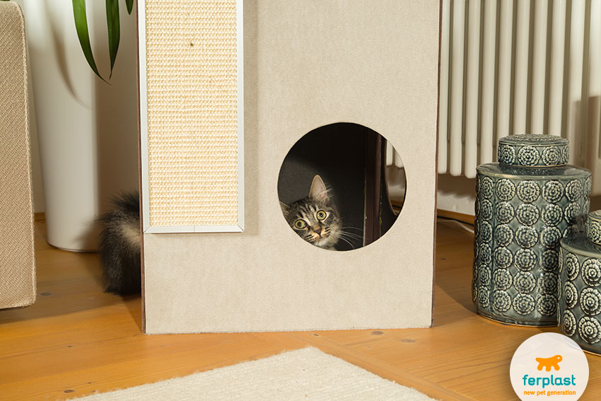 Домик для кошек с когтеточкой и зонами для отдыха и игр