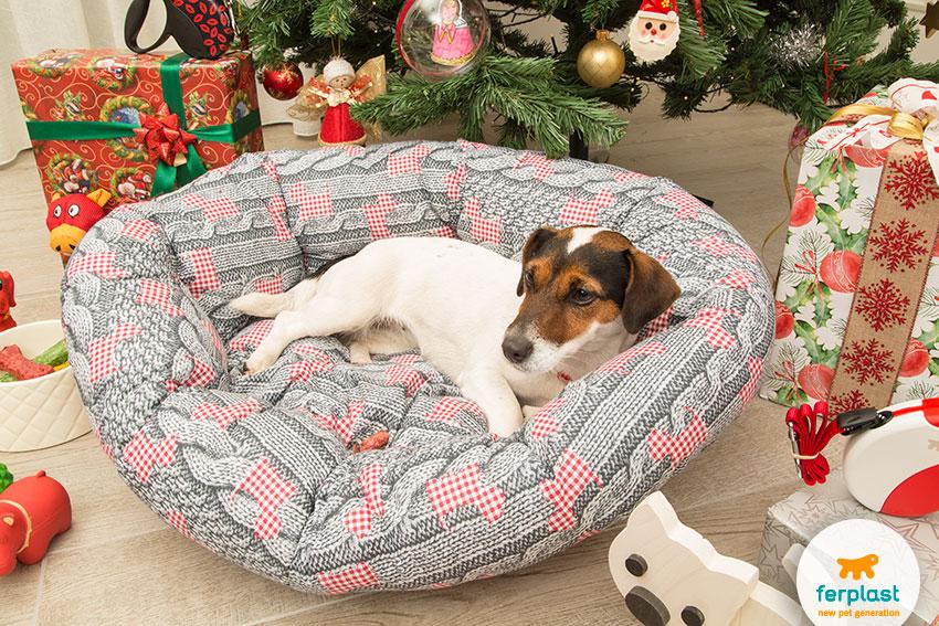 cuccia per cani a tema natalizio