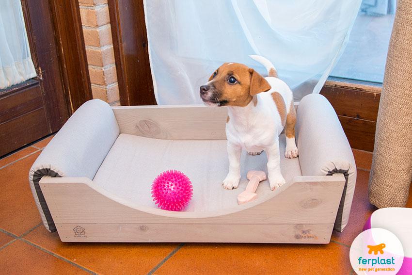 cuccia imbottita da interno per cani in legno elegante e moderna
