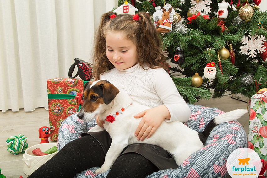 a dog and a child under a beautiful christmas tree