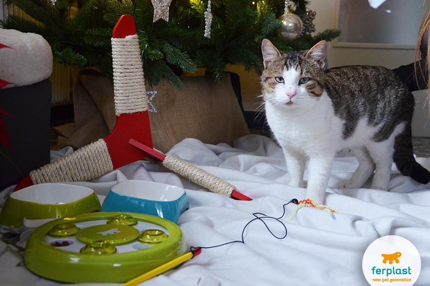 gatti_natale_albero