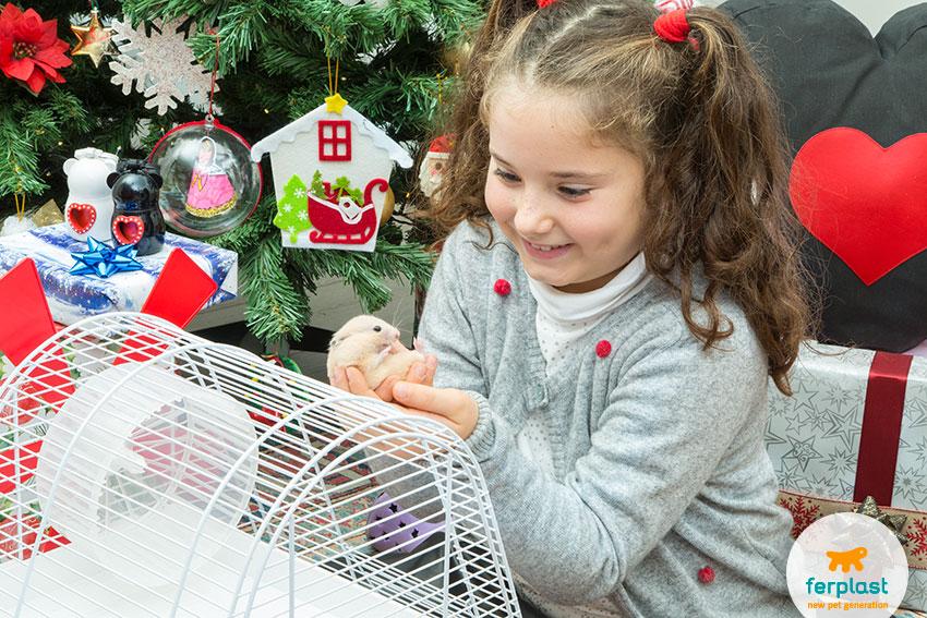 presentear um hamster para o Natal