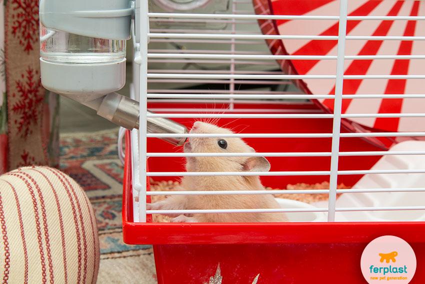 bebedouro para hamster na gaiola Ferplast