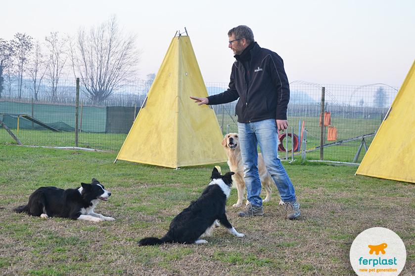 la_cuccia_di_romeo_longare_addestramento_cani