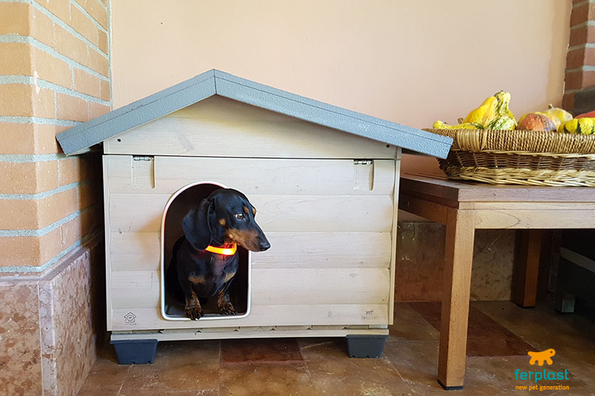 Cucce Per Cani Da Esterno In Plastica.Cuccia Da Esterno Per Cani Plastica O Legno Love Ferplast