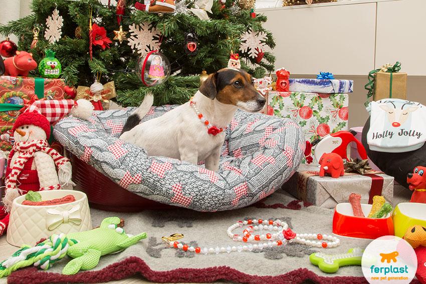 regali per il cane a natale