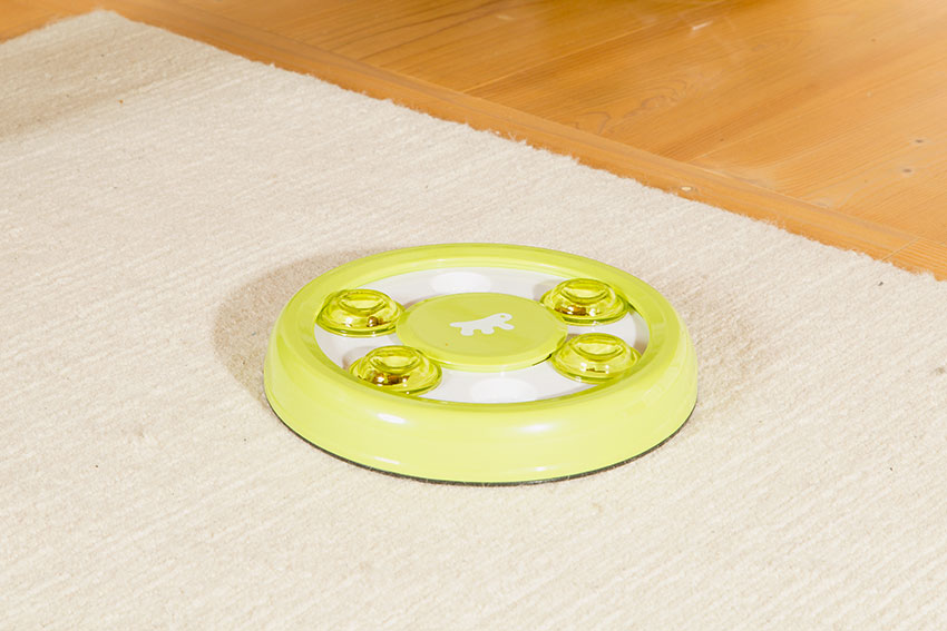 cat intelligence toy with food inside