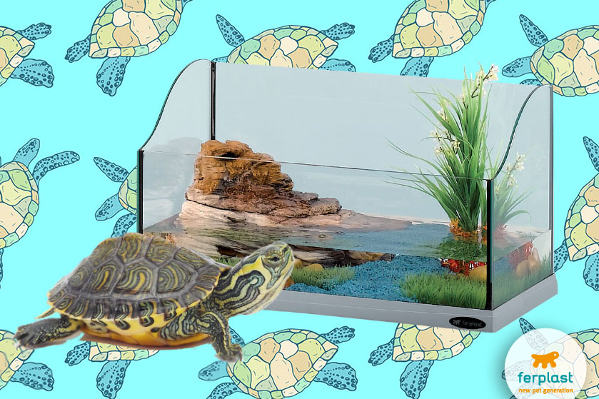 ferplast_acquari_tartarughe