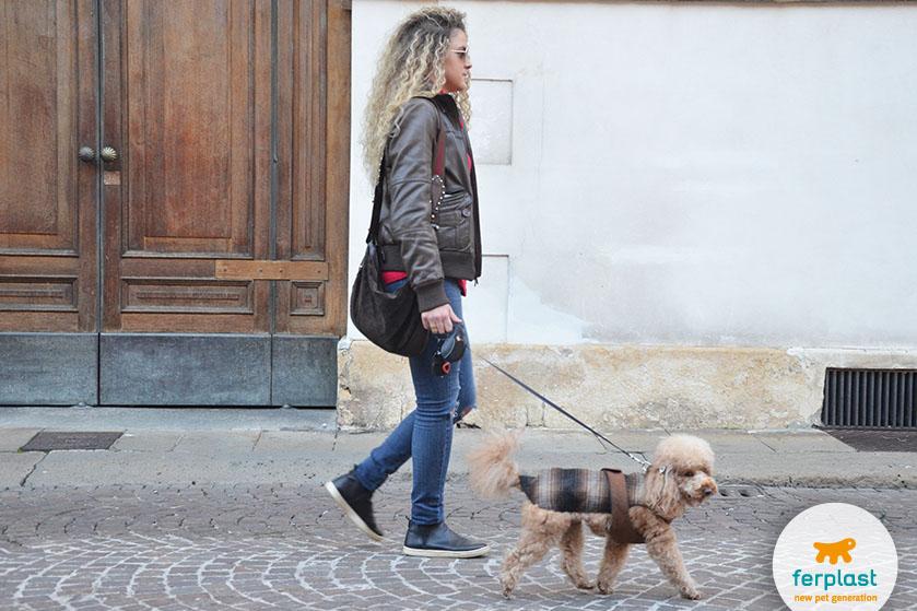 passeggiata_cane_ferplast