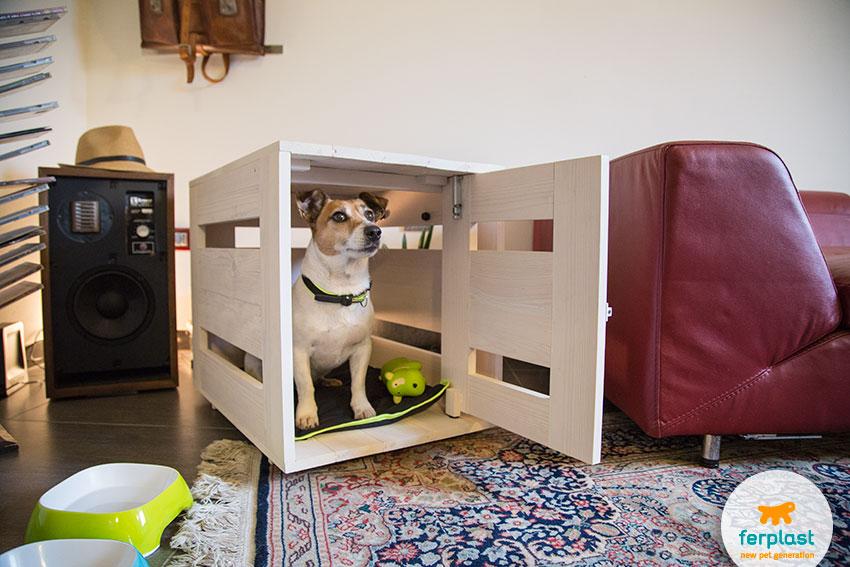 usare il kennel per cani per l'ansia da separazione