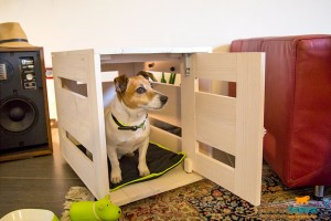 choosing the right indoor kennel for dogs material and