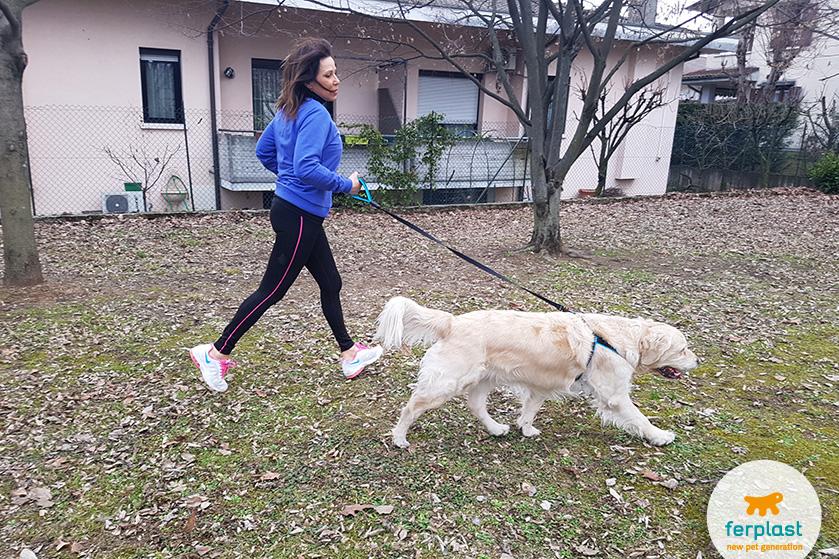 esporte-com-cão-correr