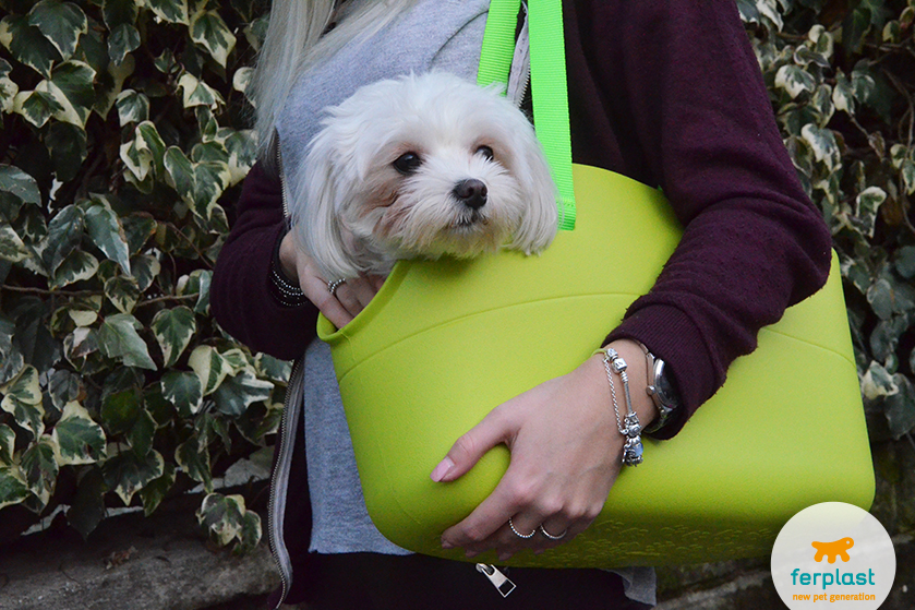 borsa_ferplast_with_me_verde_prezzo