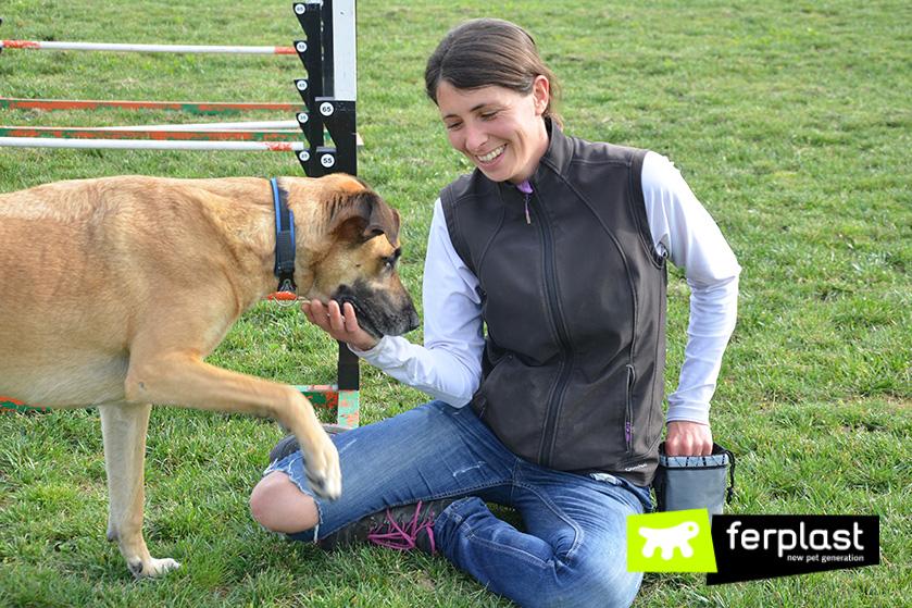 elisa_pellizzari_wedogit_vicenza_centro_de_entrenamiento_para_perros