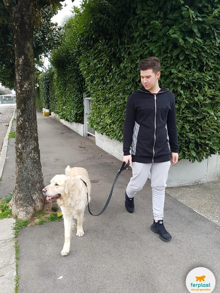 ferplast_pettorine_guinzagli_per_cani