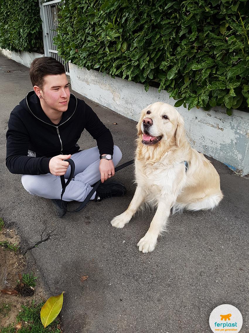 paseo_a_perros_que_correa_para_usar