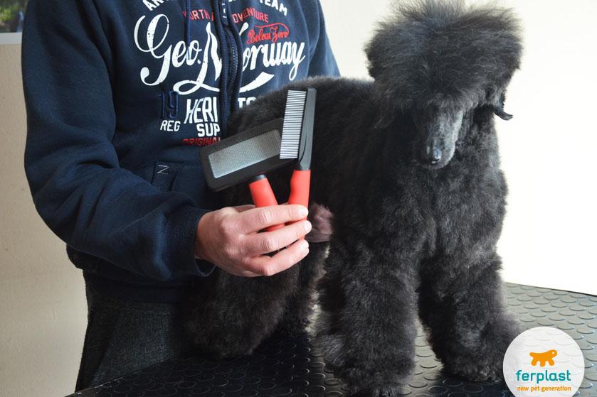 Гребень-волосы-кудрявые-собакаГребень-волосы-кудрявые-собака-чесальщица