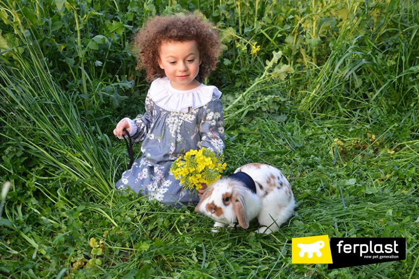 primavera_coniglio_parco_come_fare