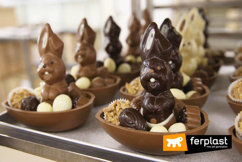 uova_pasqua_cioccolato_conigli