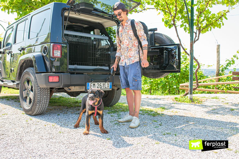 Cane e padrone davanti alla macchina con kennel per cani Superior di Ferplast