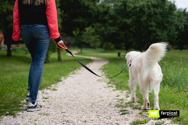 Cane e padrona a passeggio