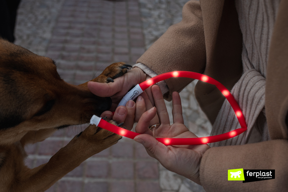 Dettaglio collare per cani Night Over Collar Ferplast
