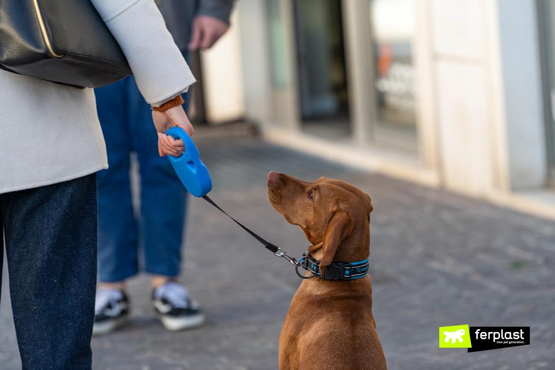 Cane in città con guinzaglio retraibile Flippy One di Ferplast