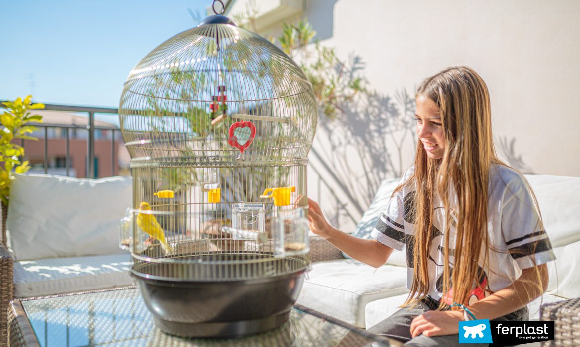 Child with canary in Ferplast cage Bali