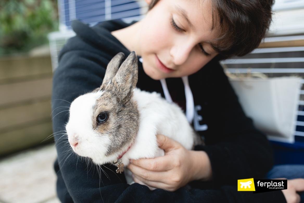Coniglio tra le braccia del padroncino