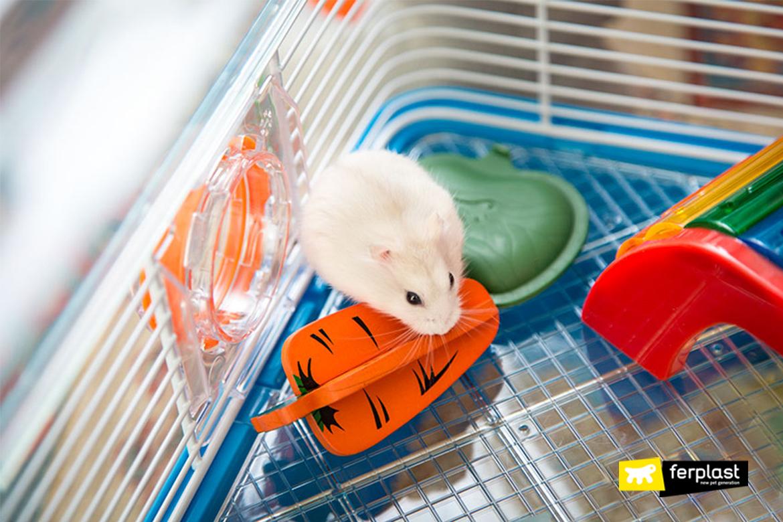 Criceto in gabbia con giochi e accessori Ferplast