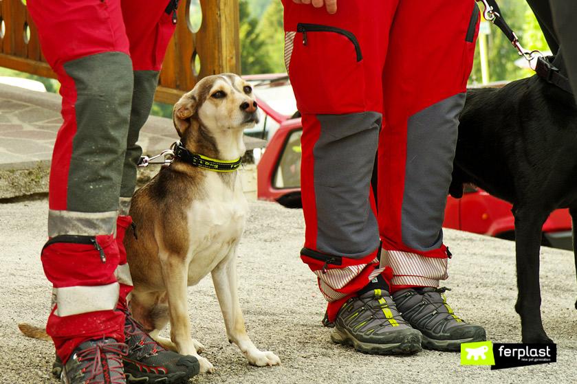 evento-folgaria-ferplast-cani-salvataggio