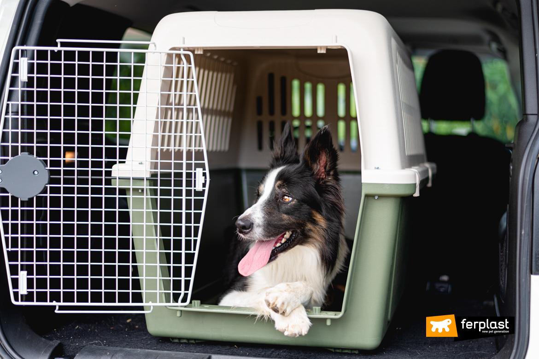 Cane nel trasportino Atlas di Ferplast